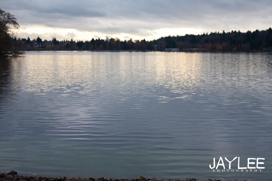 green lake, green lake sunset, greenlake, greenlake photography, greenlake engagement photographers