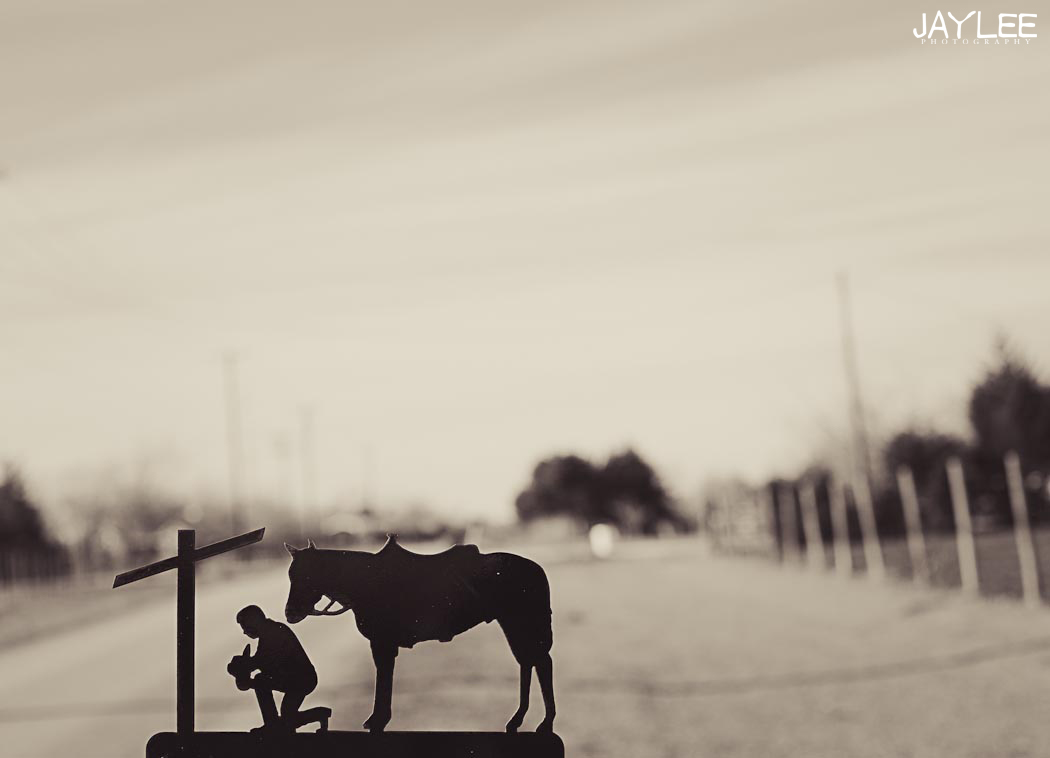 creative depth of field photo, beautiful texas photography, inventive photography, creative photography texas