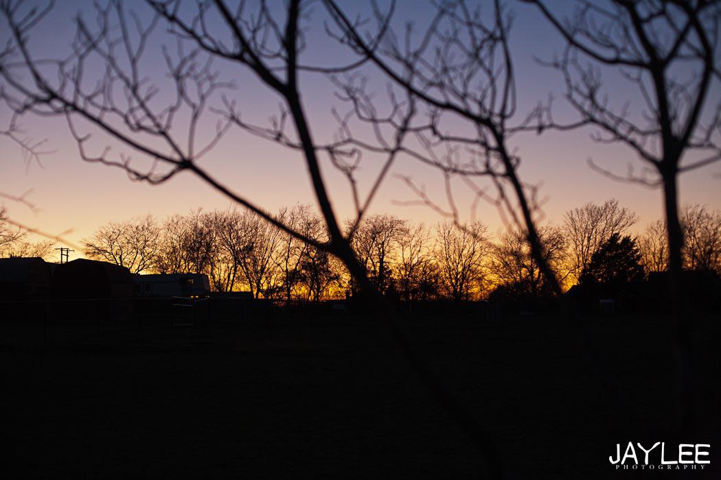 texas landscape, texas landscape photography