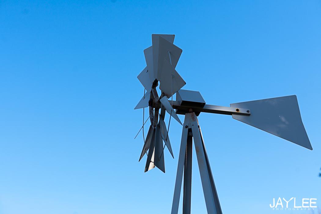 yard windmill, wind mill, wind mill texas, windmill texas