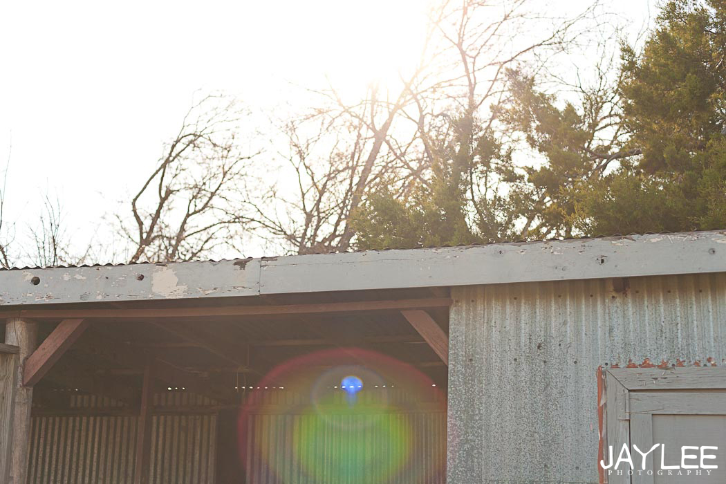 texas barn, sun flare photography, barn sun flare