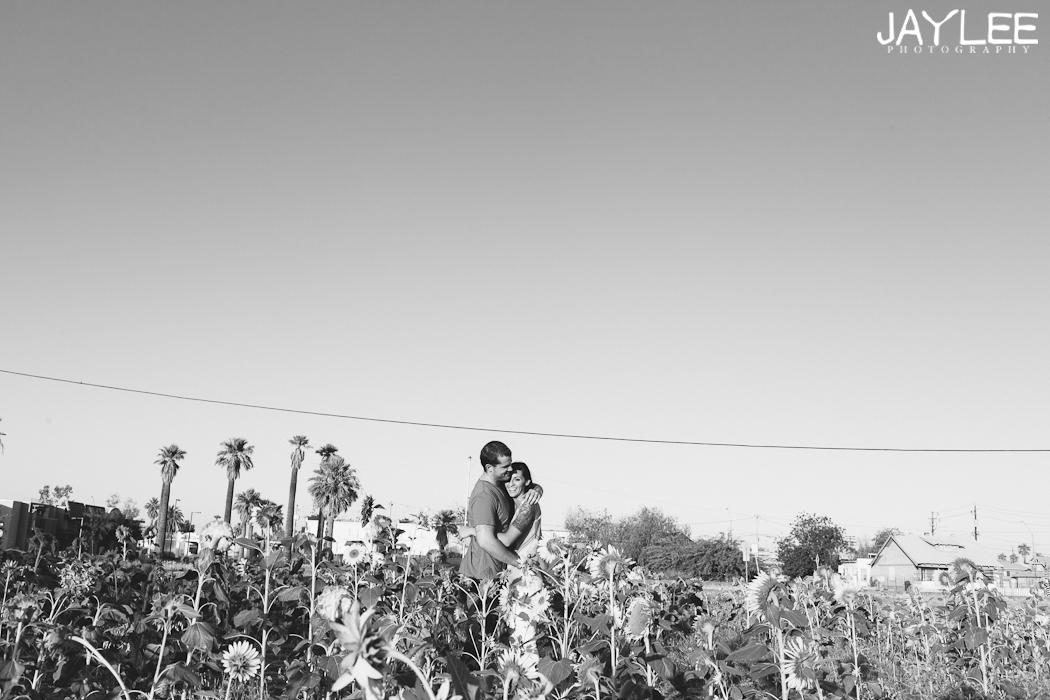 phoenix arizona engagement, seattle engagement photographer, wedding photographer seattle, offbeat wedding photographer seattle, offbeat wedding photographer phoenix, sunflower engagement phoenix
