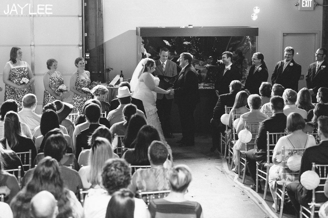 candid wedding photographer seattle, withinsodo wedding