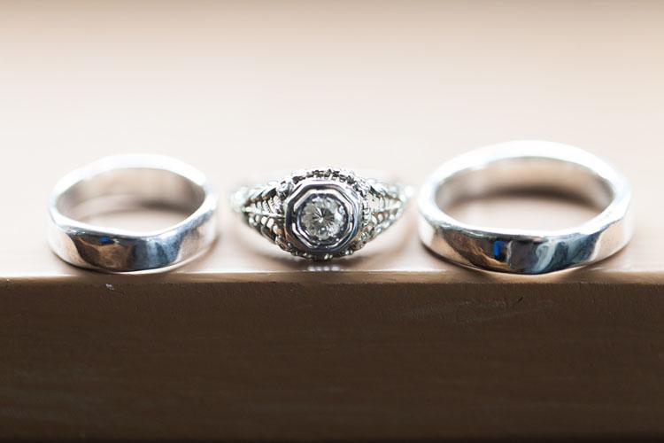 turtle love company wedding rings