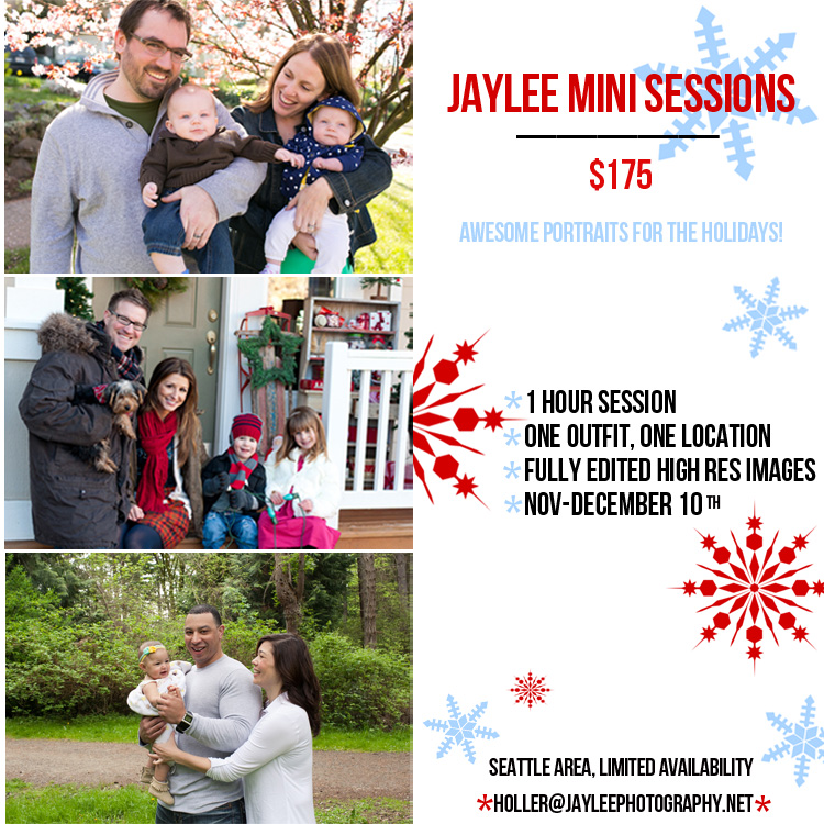 mini session christmas holiday card photographer in seattle