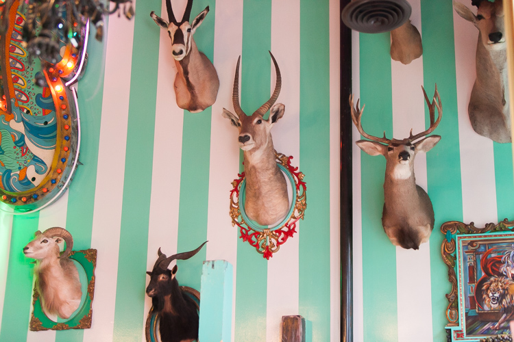 animal heads on the wall at the unicorn in seattle