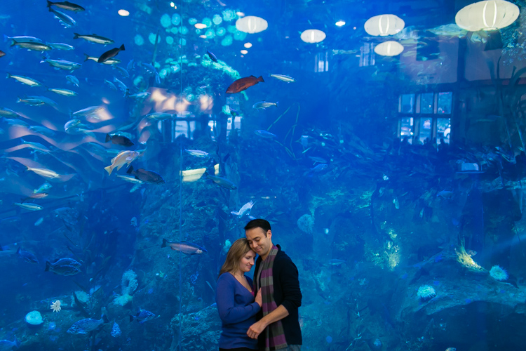 seattle aquarium engagement session
