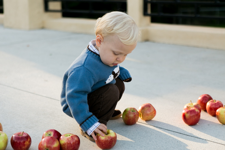 adorable little boy wedding picking up apples