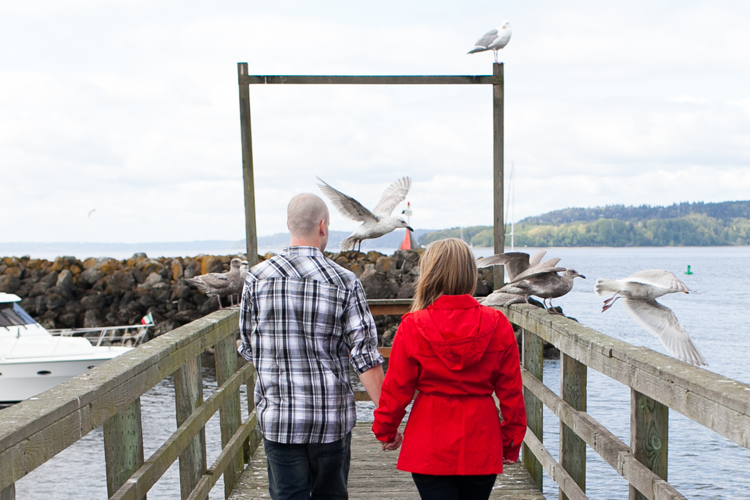 seagull flying engagement photography