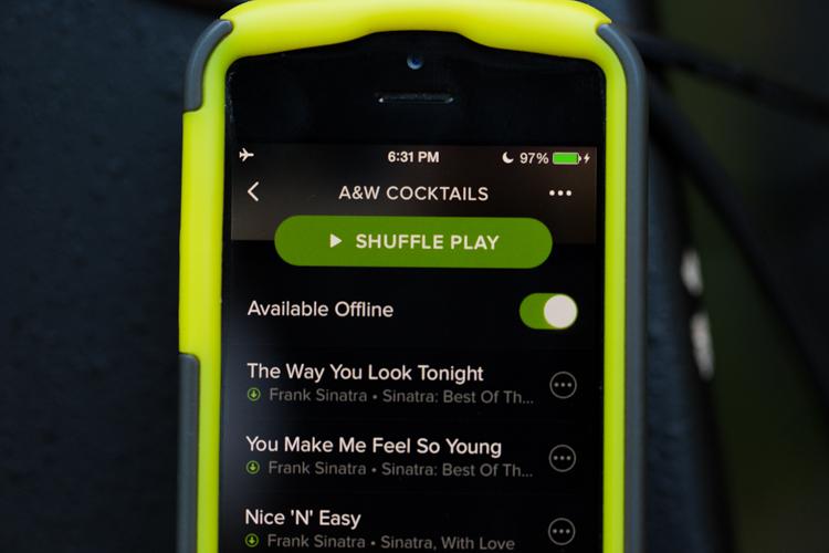 Using spotify playlists for wedding ceremony music.
