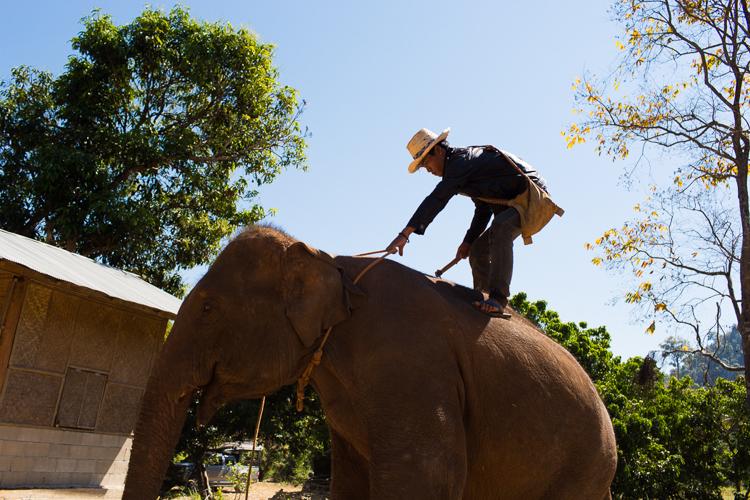 Thailand__part2-62