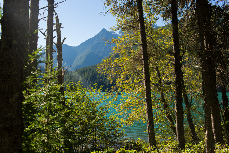c-j-diablo-lake-wedding-22