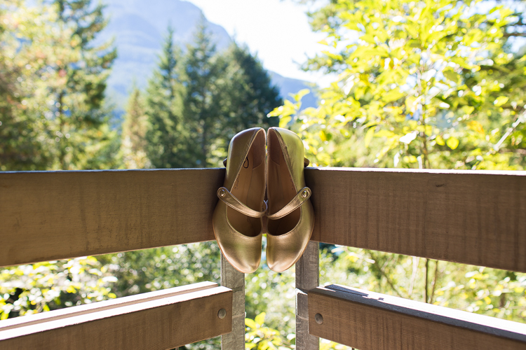 c-j-diablo-lake-wedding-29