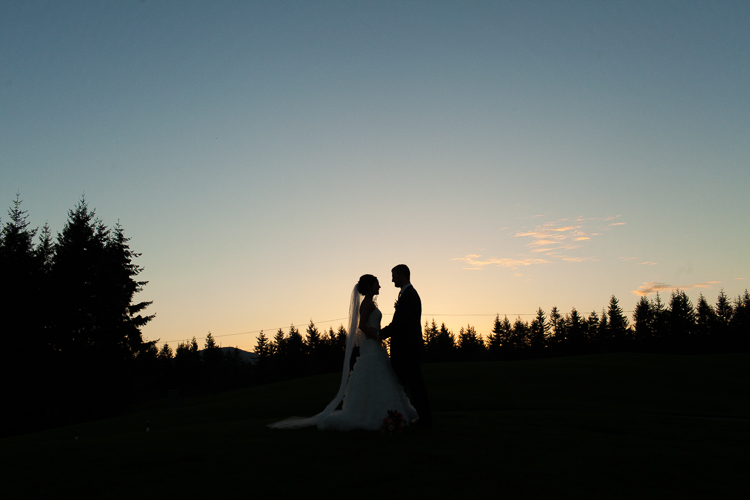 beautiful silhouette wedding photography