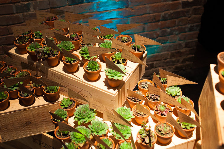 succulents wedding place settings