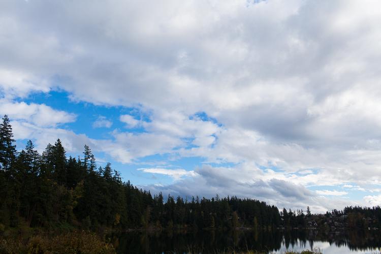 m-j-wed-lake-wilderness-lodge-wedding-1